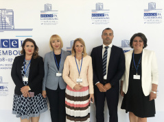4 July 2019 National Assembly's standing delegation at the OSCE PA Annual Session